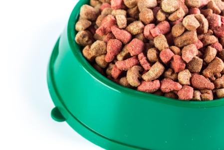 discount dog food